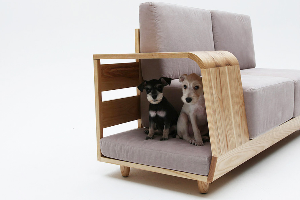 Its Time To Share Your Sofa With Your Pet 123 Design Blog