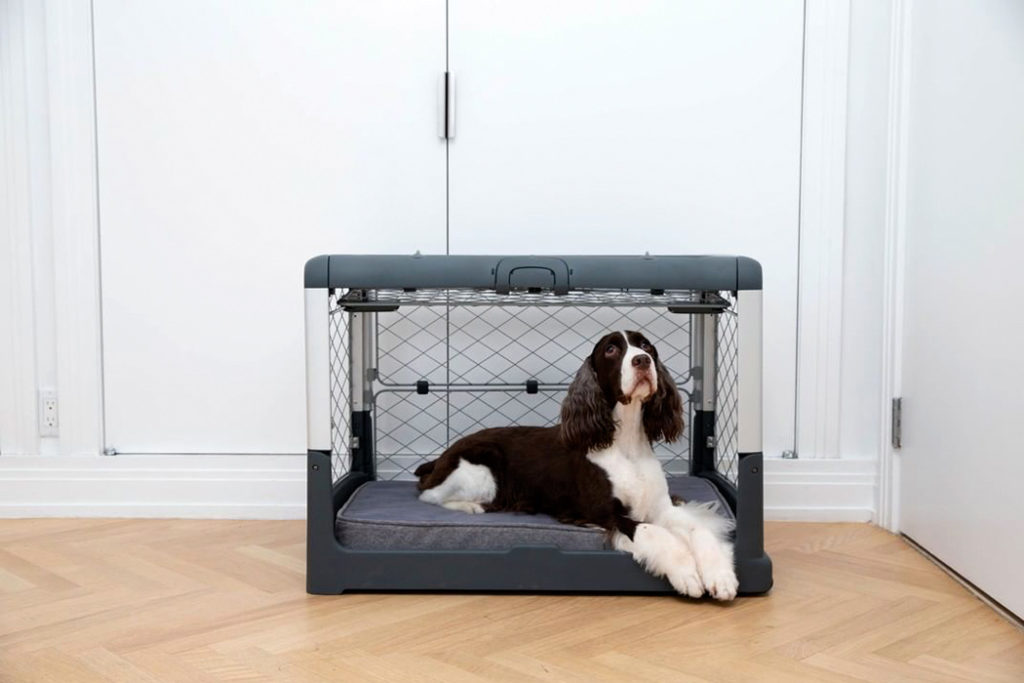 soft foldable dog crate, best collapsible dog crate, collapsible dog crate walmart, collapsible travel dog crate, small foldable dog crate, 54 inch foldable dog crate, collapsible dog crate amazon, collapsible dog crate instructions, New best product development, best product design, best industrial designers, best design companies, enthusiasts here are your links to look into: best, review, industrial design, product design website, medical product design, product design blog, futuristic product design, smart home product design, product design portfolios, cool products, best products, cool designs, best designs, awesome new, best new, awesome products, cool stuff, best technology, awesome pictures, awesome photos, new products, new technology, cool, cool tech, new tech, awesome, product design product, industrial design, design, best design, best companies, 3dmodeling, modern, minimalism,