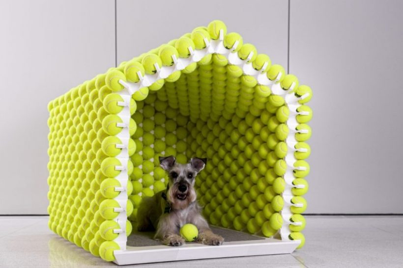 best dog house for hot weather, petsfit dog house, how warm is an insulated dog house, dog house plans, heated dog house, metal insulated dog house, best dog house for german shepherd, underground dog house reviews, New best product development, best product design, best industrial designers, best design companies, enthusiasts here are your links to look into: best, review, industrial design, product design website, medical product design, product design blog, futuristic product design, smart home product design, product design portfolios, cool products, best products, cool designs, best designs, awesome new, best new, awesome products, cool stuff, best technology, awesome pictures, awesome photos, new products, new technology, cool, cool tech, new tech, awesome, product design product, industrial design, design, best design, best companies, 3dmodeling, modern, minimalism,